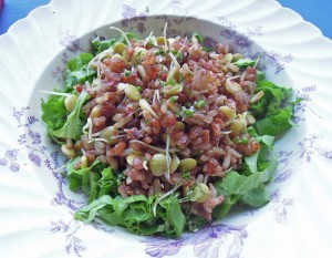 sprouted kitcheree salad