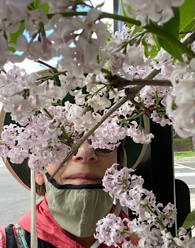 Selfie with hat mask (but not over nose) smelling lilacs